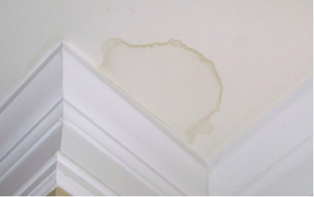 Ceiling Water Stain
