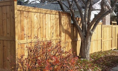 Brown Treated Fence Calgary's Best Fence Builder