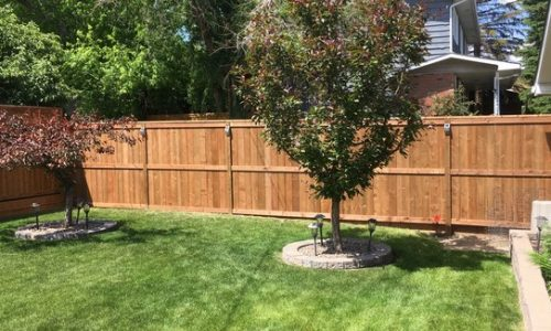 Brown Treated Fortress Fence 2 Calgary's Best Fence Builder